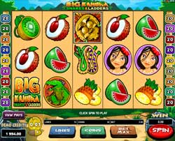 Machine à sous Big Kahuna gratuit dans Microgaming casino