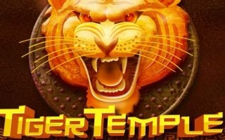 Tiger Temple, la nouvelle machine à sous de Genesis Gaming disponible