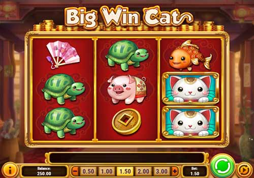 Machine à sous Big Win Cat