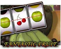 Fantastic Fruit